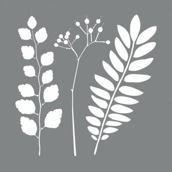 Šablona plastová - Botanic, 20,32x20,32cm, 2kusy- 2 dekory